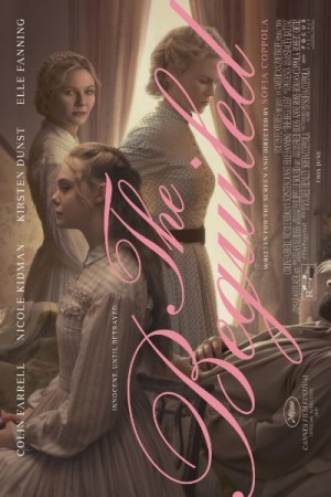 Rent The Beguiled Online
