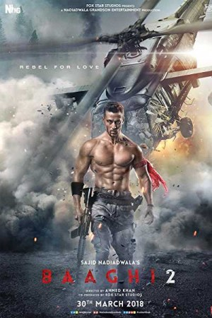 Rent Baaghi 2 Online