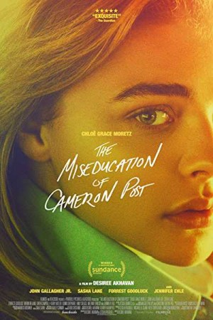 Rent The Miseducation of Cameron Post Online