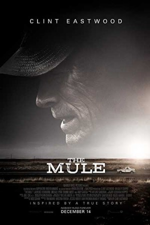 Rent The Mule Online